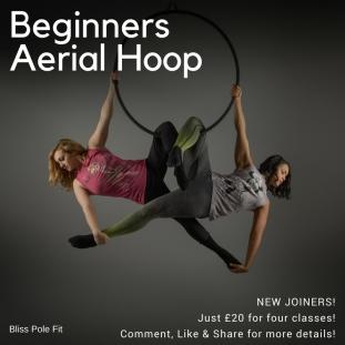 Beginners Aerial Hoop